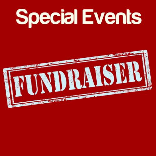 Fundraiser Special Events Icon