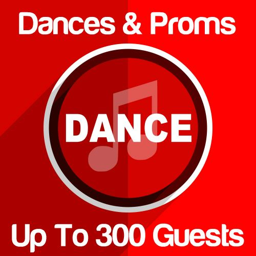 Dances & Proms Up To 300 Guests Icon